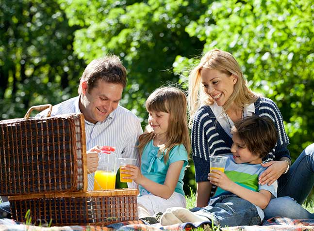 family-picnicking